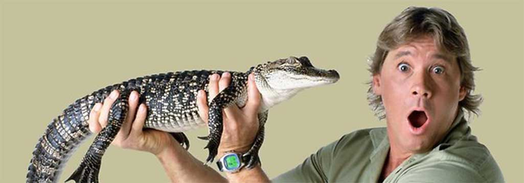 steve-irwin-crocodil