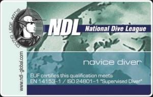 Сертификат NOVICE DIVER