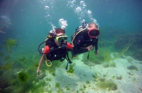 www-diving-scuba-ru2013-08-12-14_40_15-copy