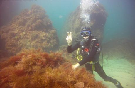 www-diving-scuba-ru2013-09-02-09_43_21