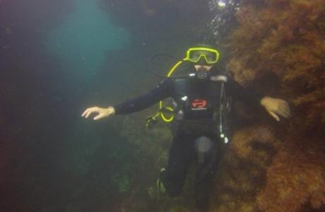 www-diving-scuba-ru2013-09-17-09_48_46